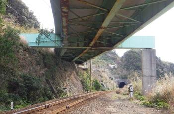 鋼橋(6橋)の部材取替・支承取替設計