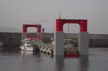 浮桟橋詳細設計(漁港 L50m×B6m×H2.5m)※鋼製固定スロープ有り